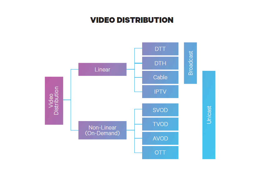 The differences between DTH and DTT | SES